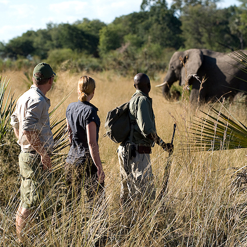 Walking Safaris Africa